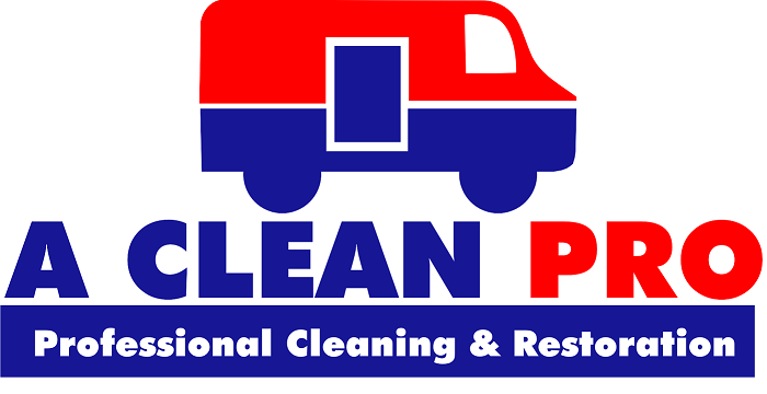 CleanProLogo1small